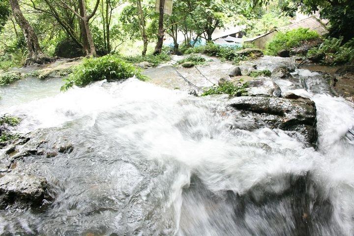 Suối Mỏ Gà ngày đêm xuôi chảy, nước trong vắt tạo thành một dòng thác nhỏ tung bọt trắng xóa