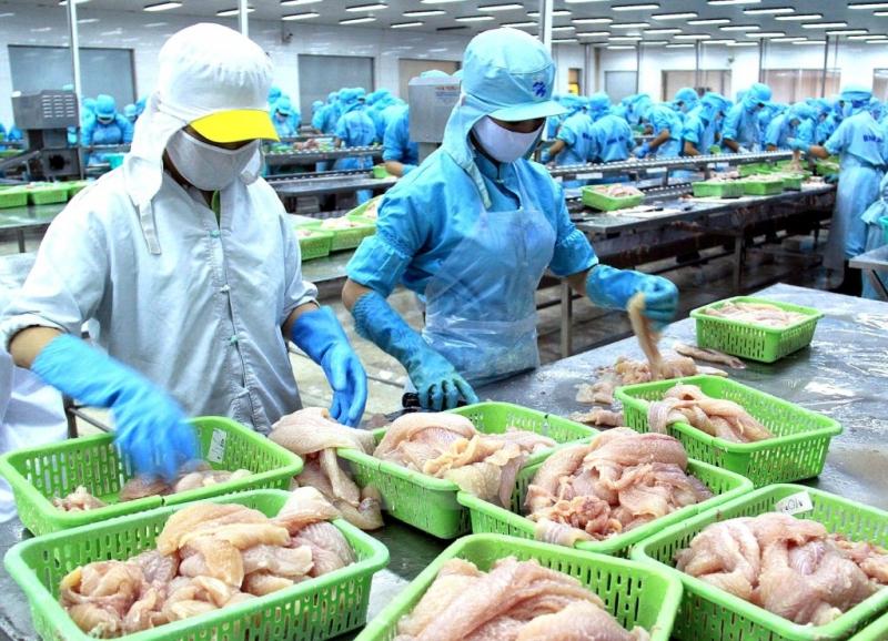 Cơ sở chế biến hàng thủy sản xuất khẩu