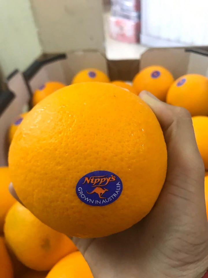 Hapi Fruit - Trái Cây Nhập Khẩu