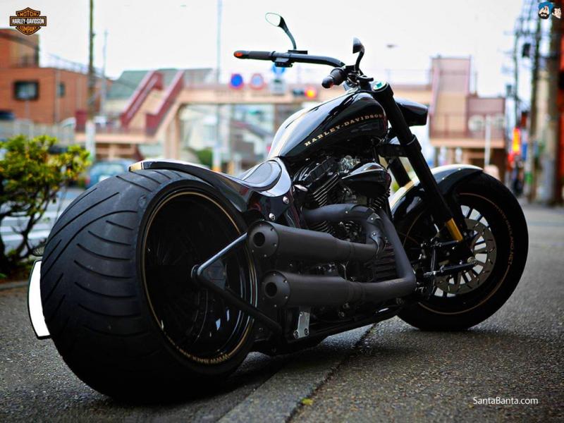 Xe của hãng Harley-Davidson