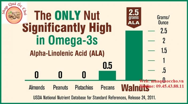 Bảng so sánh hàm lương Omega 3 của quả óc chó