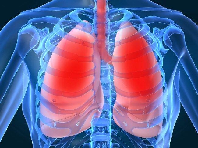 Hãy giúp phổi thải độc, chứ đừng làm hại nó
