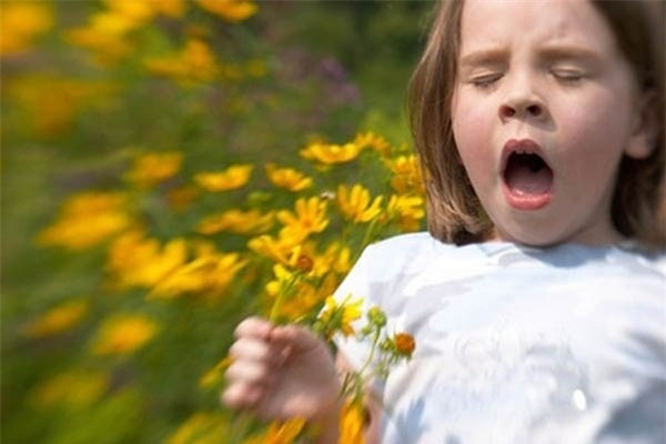 Hen suyễn dị ứng do phấn hoa