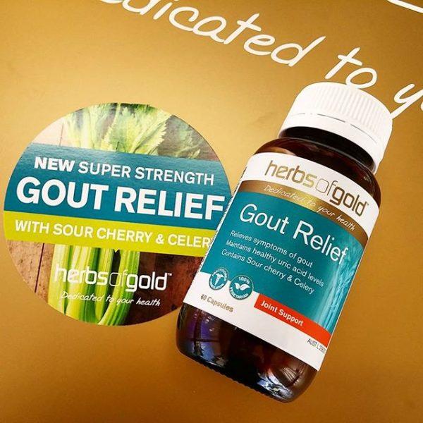 Herb Of Gold Gout Relief – Hỗ trợ điều trị gút