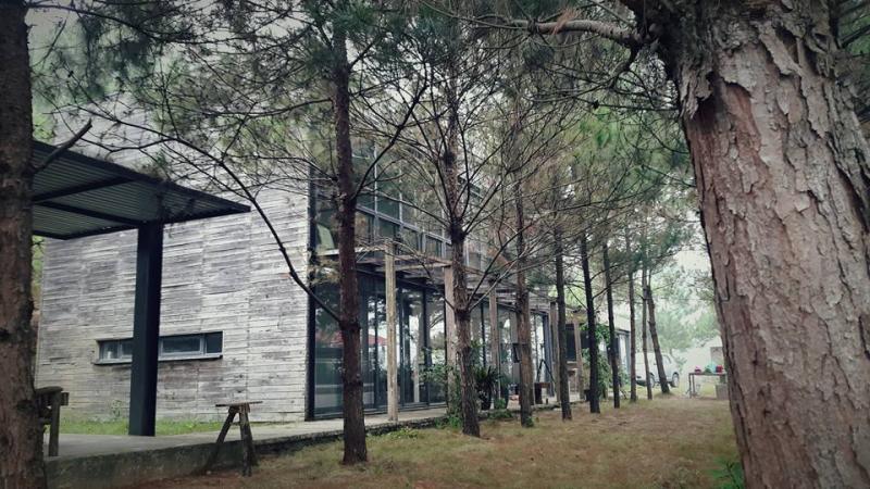Lối kiến trúc đẹp, lạ mắt gần gũi thiên nhiên