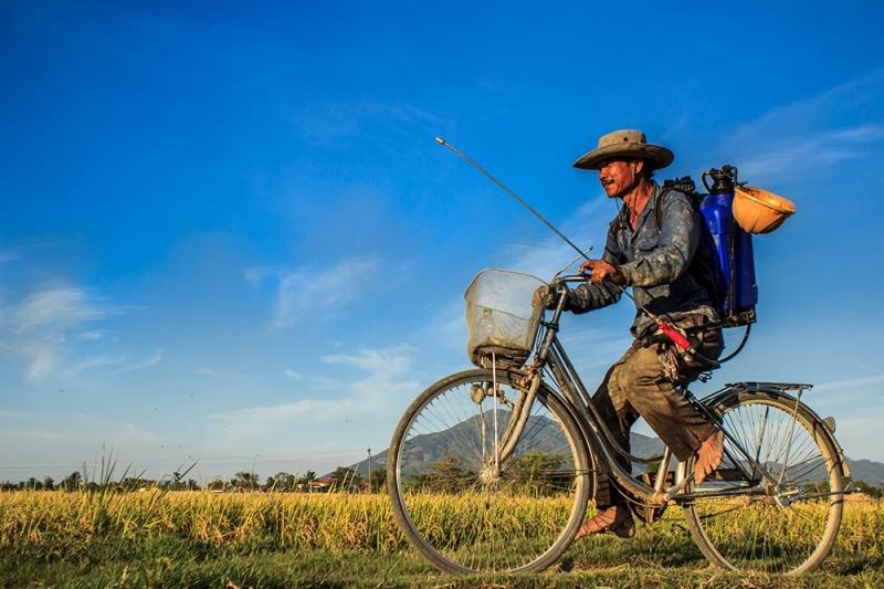 Hình ảnh người nông dân đi làm đồng
