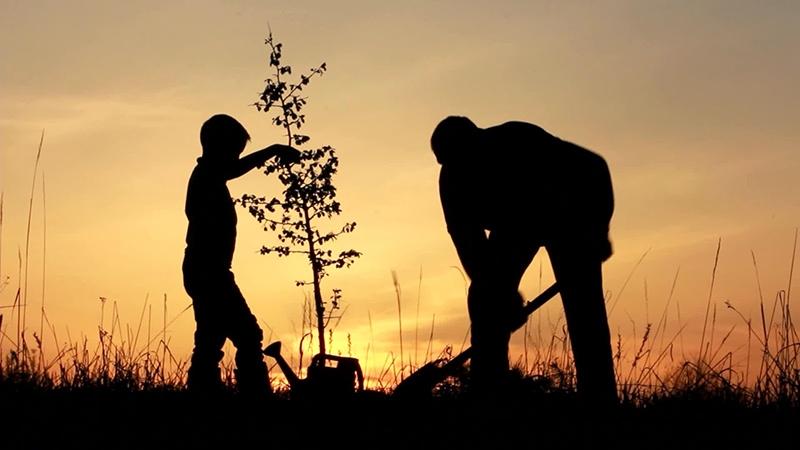 Hình ảnh bố trồng cây mới đẹp làm sao!