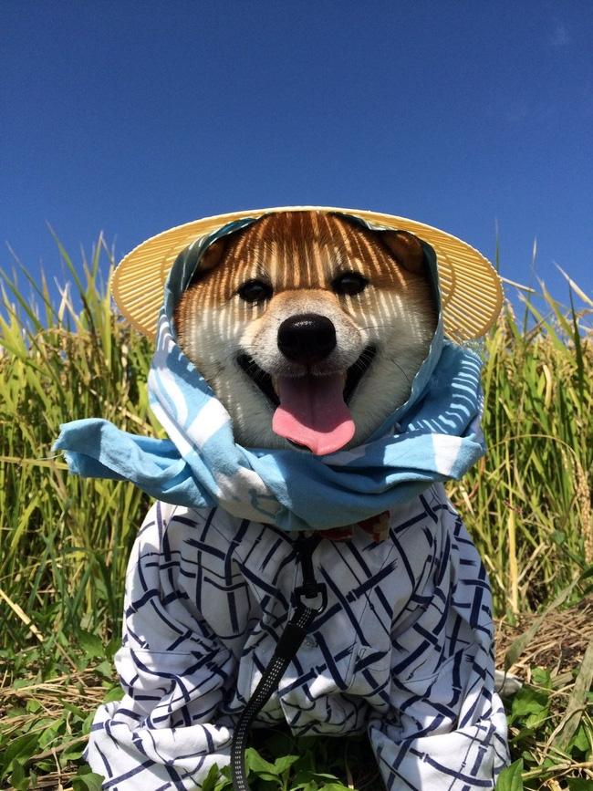 Trời nắng quá em ấy phải mặc áo chống nắng