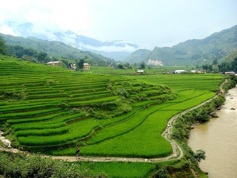 Quang cảnh xung quanh H'Mong Mountain Retreat