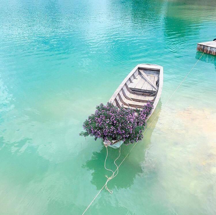 Chụp ảnh cùng thuyền hoa
