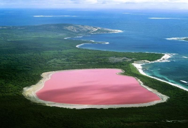 Hồ Hillier không chỉ là hồ nước kỳ lạ mà còn độc đáo với màu hồng tự nhiên, tọa lạc trên đảo Middle, Tây Australia