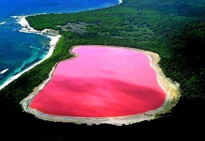 Hồ Hillier là một trong những hồ nước đặc biệt nhất trên Thế giới bởi màu hồng tự nhiên của nó.