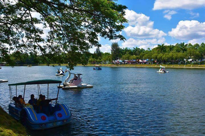 Hồ nước ngọt có nhiều cây xanh nhất, có thể nói nhiều nhất trong khu vực tỉnh Sóc Trăng.