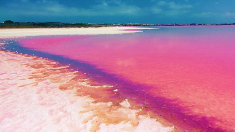 Hồ Retba như 1 cốc sinh tố dâu tây khổng lồ