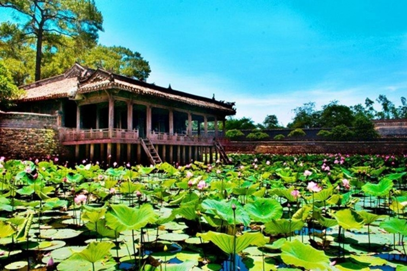 Hồ Sen Tịnh Tâm