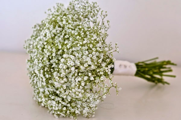 Hoa bông bi