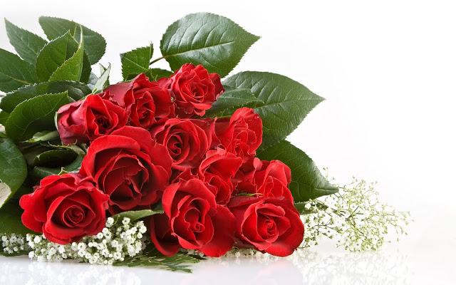 Màu đỏ cho cảm giác ấm áp của tình bạn và sự lạc quan.