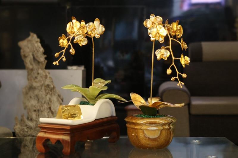 Hoa phong lan mạ vàng