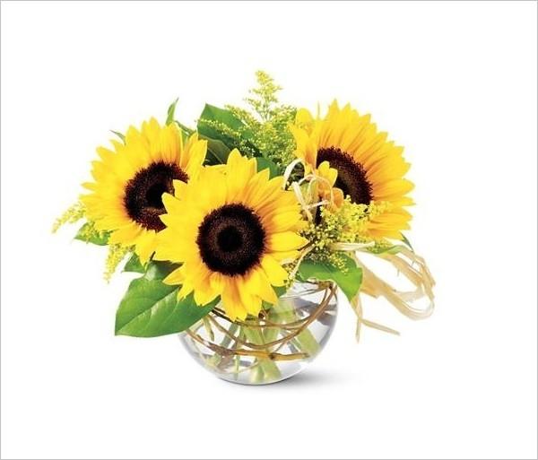 Hoa phong thủy cho ngày Tết: Hướng dương - mang lại nguồn năng lượng dồi dào cho bạn vào ngày đầu năm.