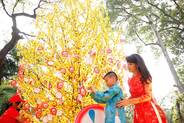 Hoa mai và đào là loài hoa tượng trưng cho ngày Tết truyền thống tại Việt Nam.