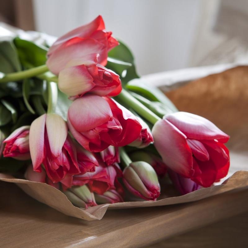 Hoa uất kim hương