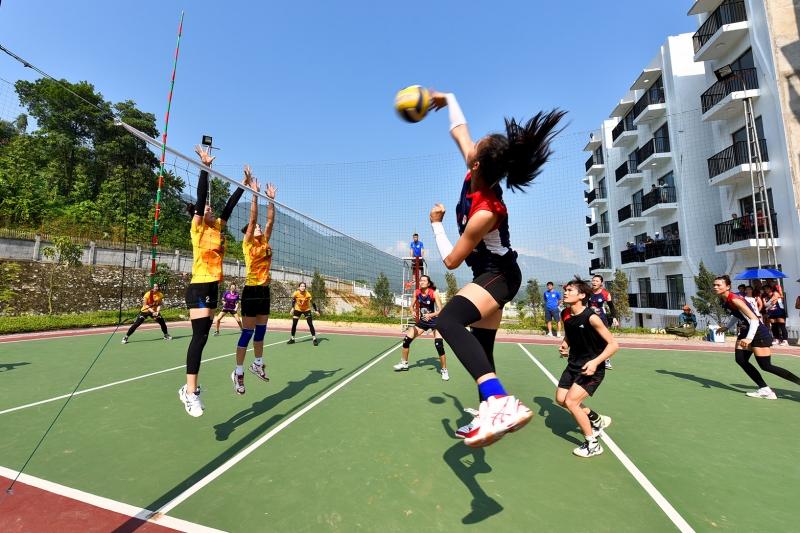Giải bóng chuyền nữ