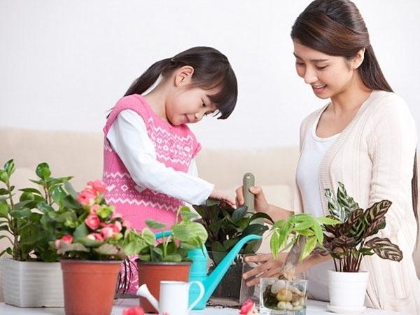 Trẻ có thể học toán thông qua các trò chơi cùng cha mẹ.