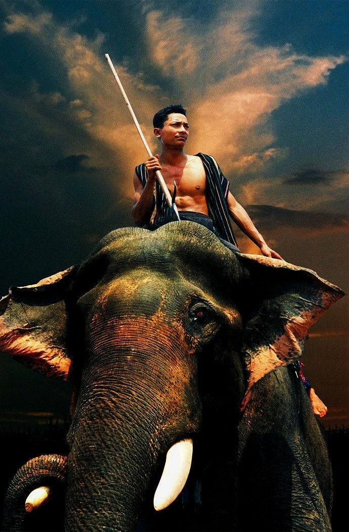 Hội Đua Voi nhằm tôn vinh tinh thần thượng võ và tài nghệ thuần dưỡng voi của đồng bào các dân tộc Tây Nguyên.
