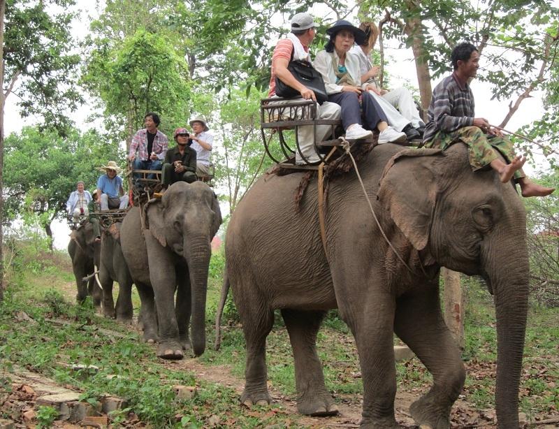 Hội đua voi