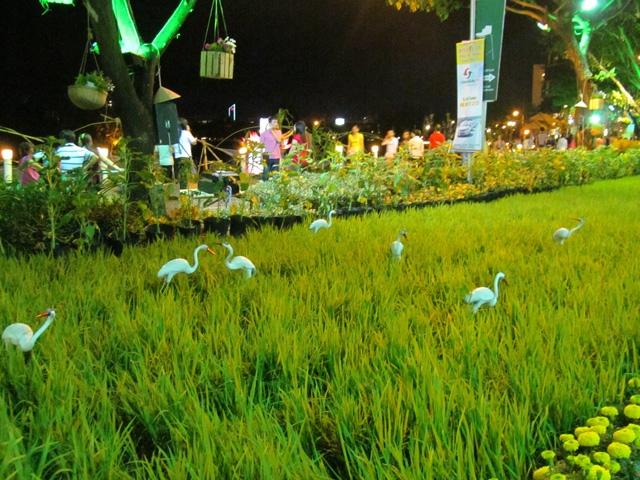 Hội hoa xuân Phú Mỹ Hưng năm 2016