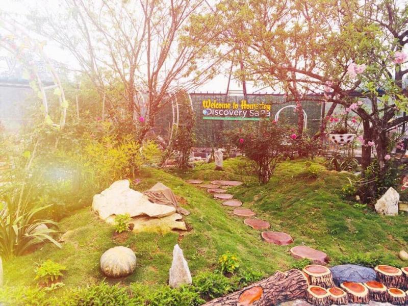 Homestay như một công viên thu nhỏ với cây cối và diện tích rất rộng