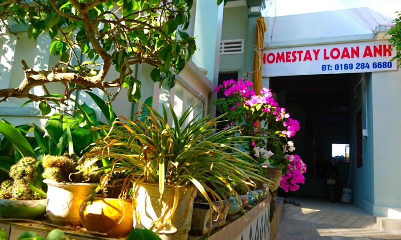 Homestay Lý Sơn - Loan Anh
