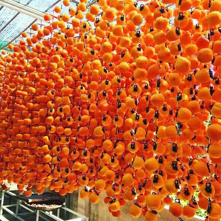 Hồng sấy một đặc sản khá nổi tiếng ở Đà Lạt
