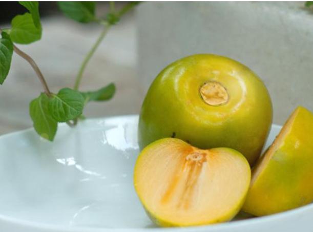 Hồng Hạc Trì không có hạt, ăn giòn ngọt vô cùng