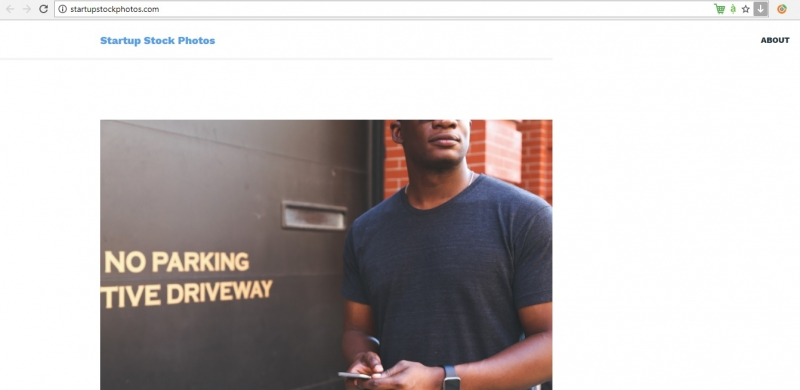 Startupstockphotos (nguồn internet)