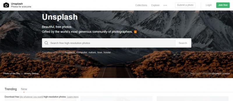 Unsplash (nguồn internet)