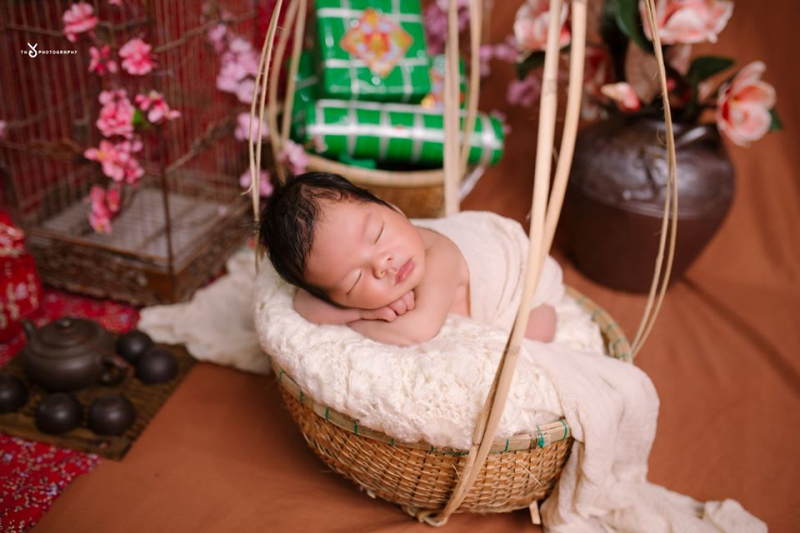 Thỏ Photography