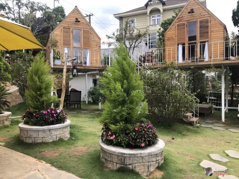 """In The Pines được biết đến như một """"căn nhà trên không"""" được thiết kế theo phong cách nhà sàn"""