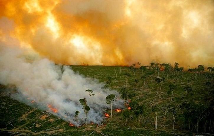 Số người thiệt mạng/năm do biến đổi khí hậu ở Indonesia là 150.000 người