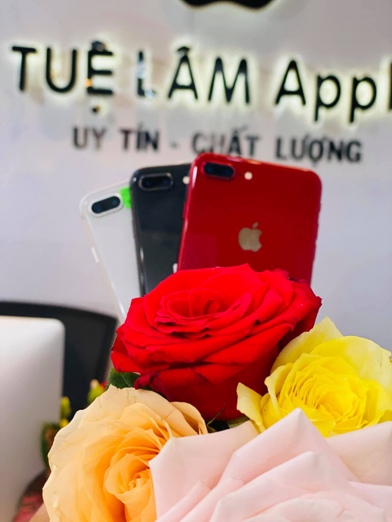 Tuệ Lâm Apple