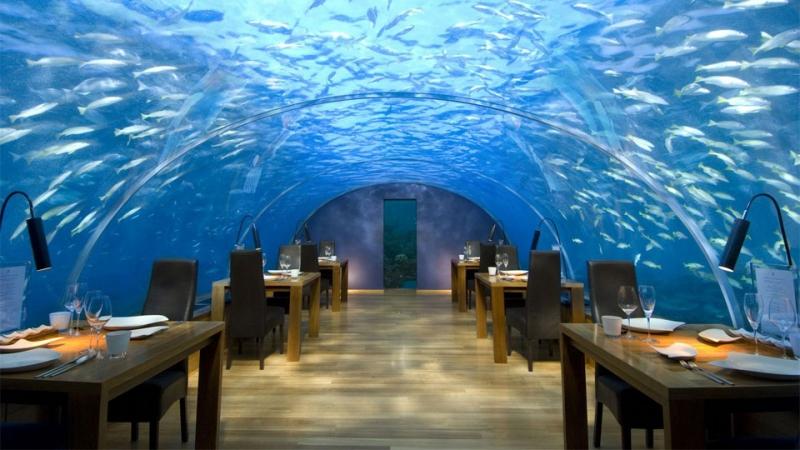 Dùng bữa ngay dưới lòng đại dương tại Ithaa Undersea