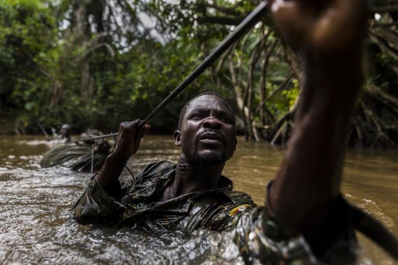 Bộ ảnh Ivory Wars  của nhiếp ảnh gia Brent - Nguồn Internet