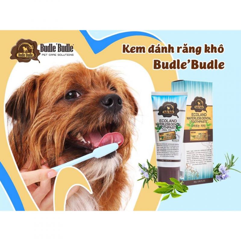 Kem Đánh Răng Khô Cho Chó Mèo Budle'Budle còn góp phần chống lại các chứng bệnh về nứu đồng thời kiểm soát mùi hôi miệng của thú cưng.
