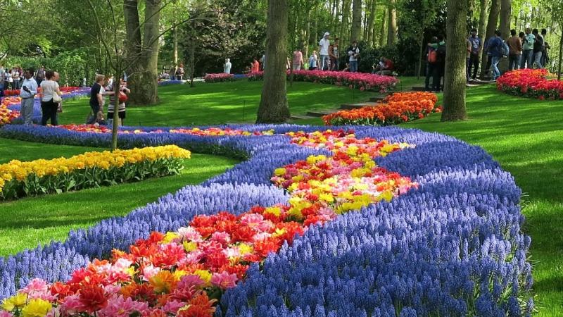 Bạn có thể đi dạo bằng xe đạp trong công viên trong lành và ngát hương hoa