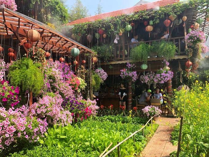 Vườn hoa tại Kha My Cafe đẹp ngơ ngẩn