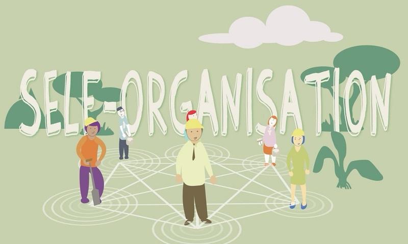 Rèn luyện khả năng tự tổ chức là một kỹ năng thiết yếu cho con bạn