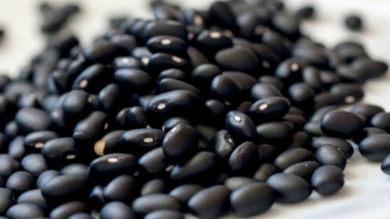 Hạt đạu đen giúp xoa nhẹ cơn đau lưng nhanh gọn