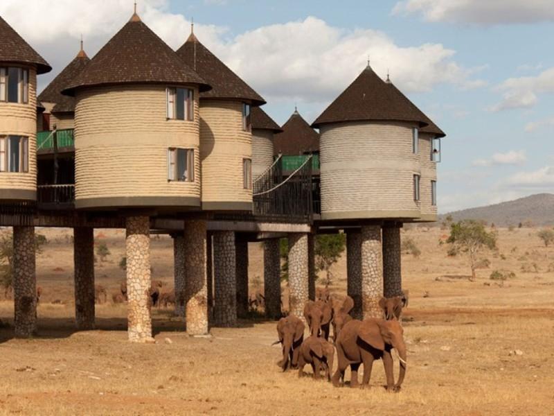 Khách sạn Sarova Saltlick Game Lodge - Kenya
