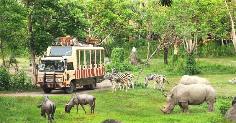 Khám phá Vinperl Safari Phú Quốc