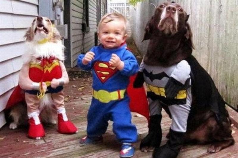 Khi các bé yêu và thú cưng là một đôi cạ cứng.